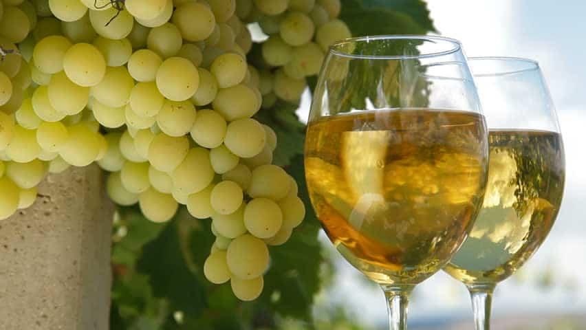 grape juice ferment