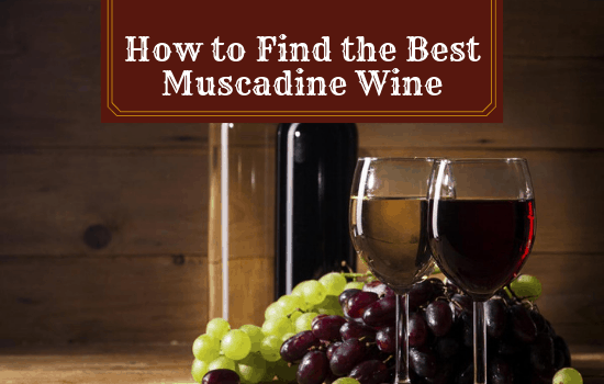 How to Find the Best Muscadine Wine