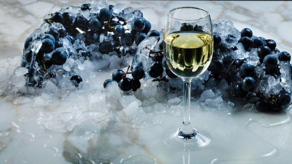 Specialty Wines In Michigan