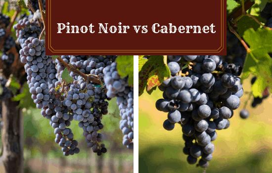 Pinot Noir vs Cabernet – Which Should You Choose?