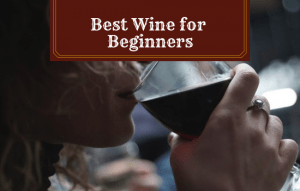 Best Wine for Beginners: Start Your Wine Journey Here