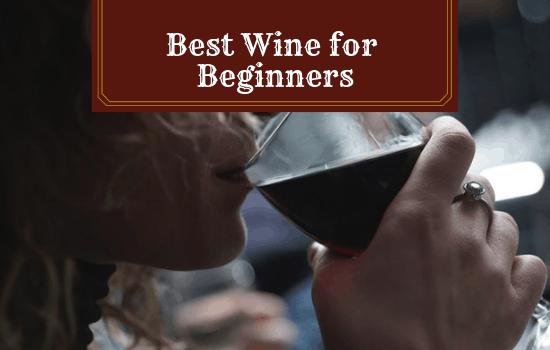 Best Wine for Beginners: Start Your Wine Journey Here