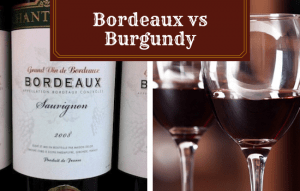Bordeaux vs Burgundy Compared: What's the Difference?