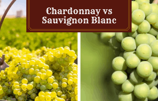 Chardonnay vs. Sauvignon Blanc: With My Personal Recommendations