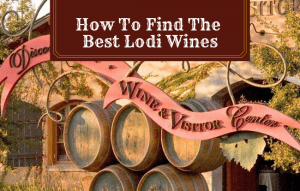 How To Find The Best Lodi Wines: My Top Recommendations!