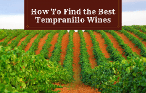 How to Find the Best Tempranillo Wines: With My Top Picks!