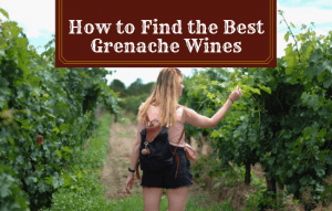 How to Find the Best Grenache Wines: My Top Picks Too!