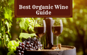 The Best Organic Wine Guide – What Are The Benefits?
