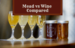 Mead vs Wine – What Are The Main Differences?