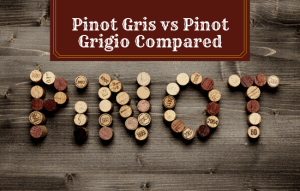 Pinot Gris vs Pinot Grigio – How Are They Different?