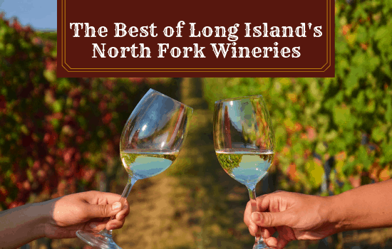 The Best of Long Island's North Fork Wineries: A Complete Guide