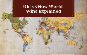 Old vs New World Wine Explained: Which is Considered Better?