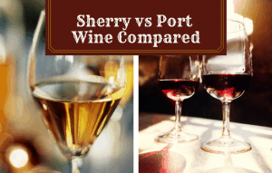 Read more about the article Sherry vs Port Wine – What is Fortified Wine?
