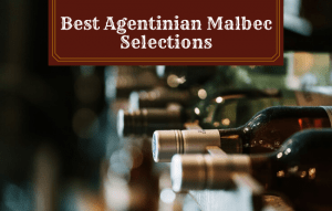 Read more about the article The Best Argentinian Malbec Selections: Top Recommendations!