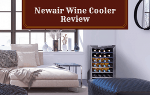 Newair Wine Cooler Review: Is It Right For You?