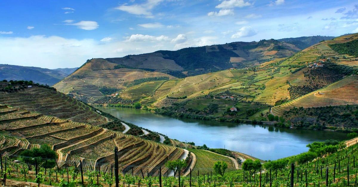 vinho verde douro culture portugal