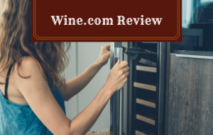 Wine (dot) Com Review: Our Honest Opinion